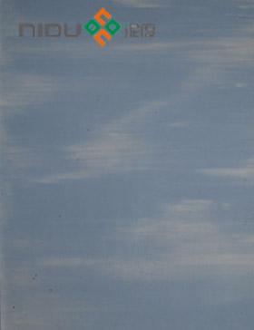 泥度硅藻泥N12 蓝天白云A